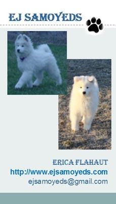 Business card for EJ Samoyeds