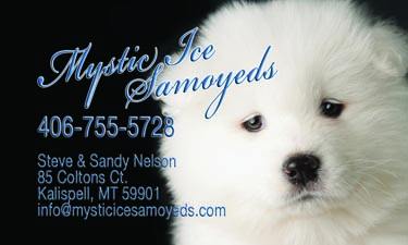 Business card for Mystic Ice Samoyeds