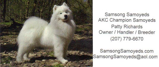 Business card for Samsong Samoyeds