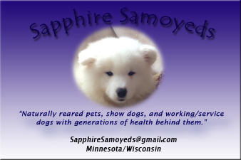 Business card for Sapphire Samoyeds