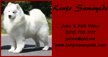 business card for Kenjo Samoyeds