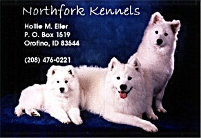 Business card for Northfork Samoyeds