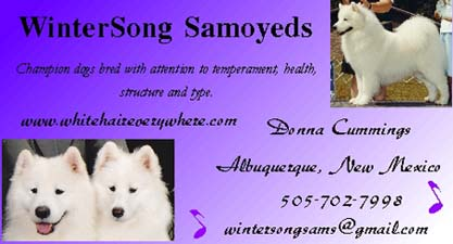 Business card for Wintersong Samoyeds